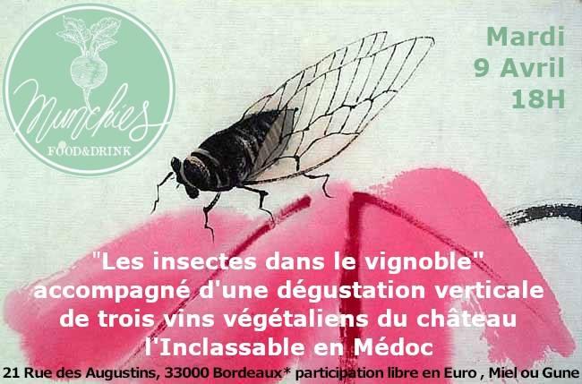 les insectes dans le vignoble